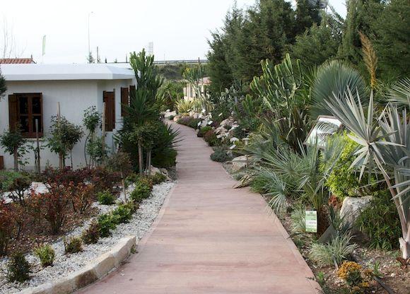 Ботанический сад в Пафосе, фото