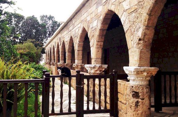 Монастырь кошек, Кипр